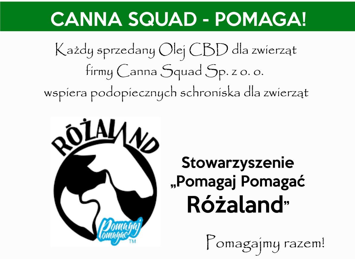 STRONA-GŁÓWNA_15